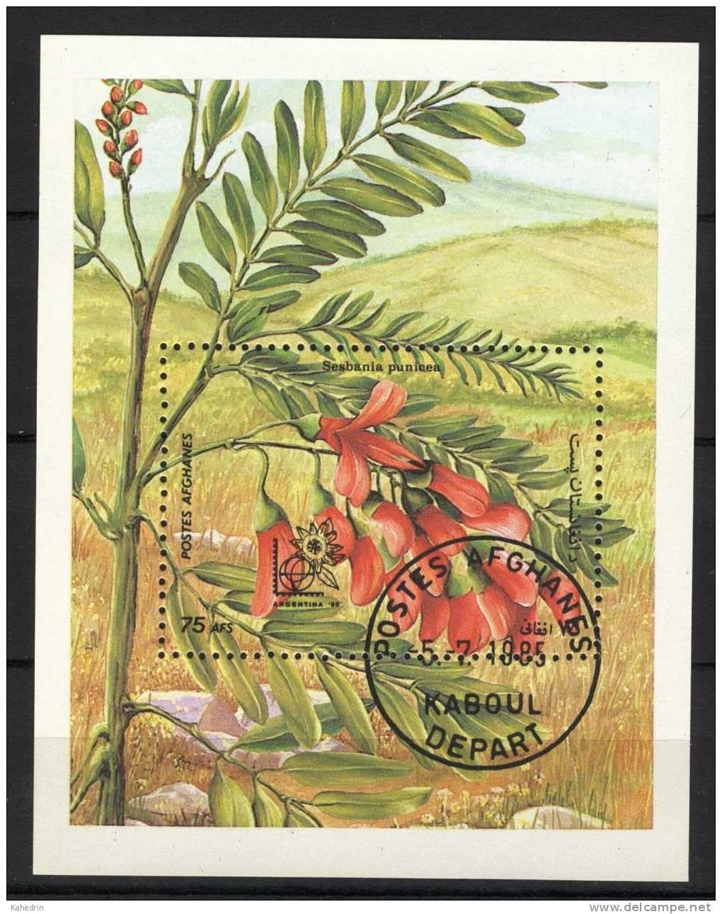 Afghanistan 1985, Flora, Fauna, Flower, S/S, (o) - Afghanistan