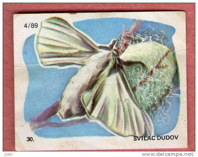 SILKWORM (Croatia Chocolate Card) Ver à Soie Gusano De Seda Worm Night Butterfly Papillon Mariposa Butterflies Papillons - Other Collections