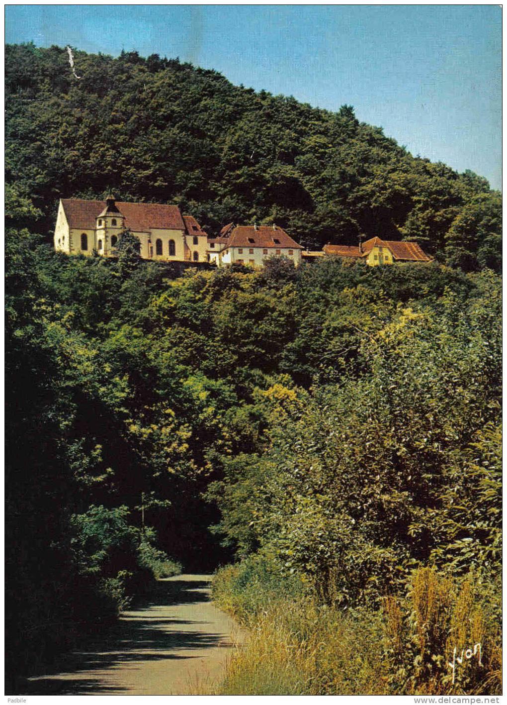 Carte Postale 68. Pfaffenheim  Très Beau Plan - France