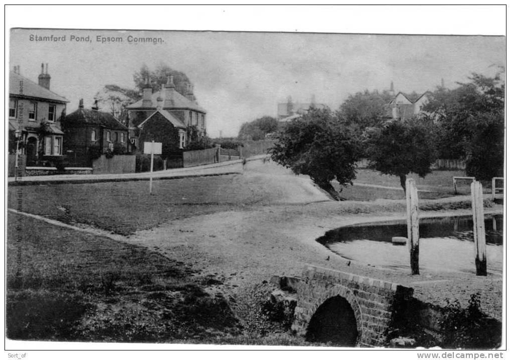 EPSOM COMMON - STAMFORD POND  - A495 - Surrey
