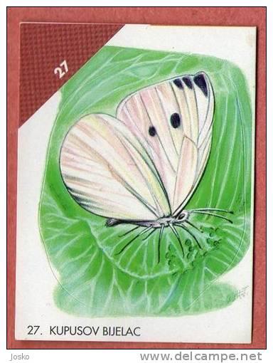 BUTTERFLY  ( Croatia Sticker) Papillon Butterflies Schmetterling Papillons Mariposa Farfalla Croatie Autocollant - Unclassified
