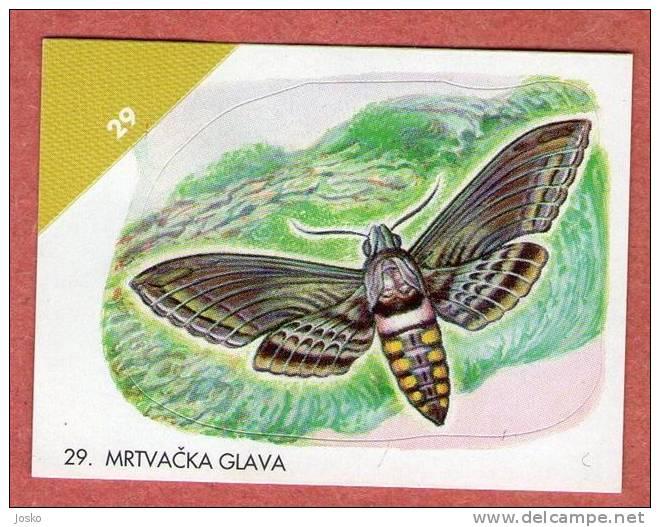 Death's-head Hawkmoth - Acherontia Atropos ( Croatia Sticker ) Hawk-moth Sphinx Tête De Mort Butterfly Papillon - Unclassified