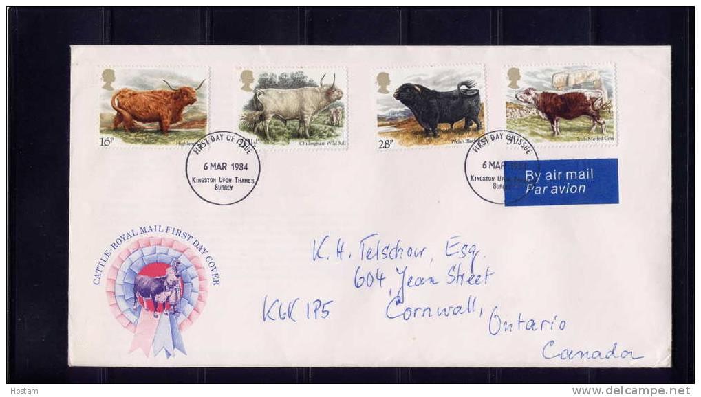 GREAT BRITAIN,  1984, OFDC   CATTLE SERIE  6 MAR 1984 - 1981-1990 Em. Décimales