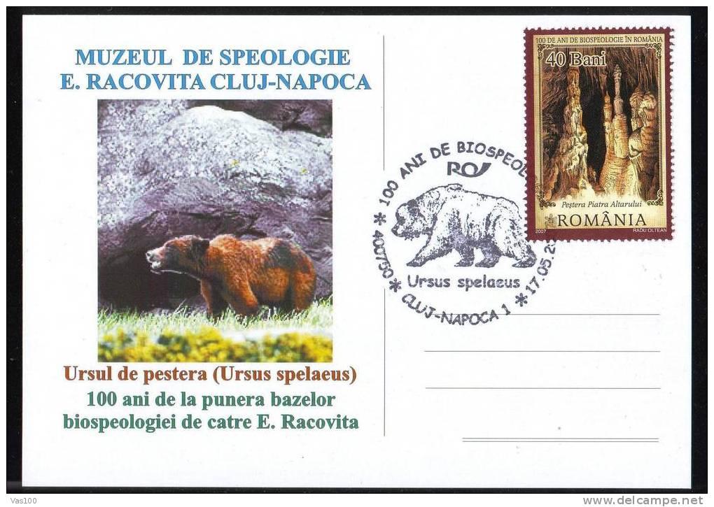 Bear Ours PMK ON POSTCARD 2007, ROMANIA. - Ours