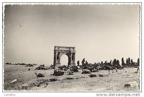CPSM Tunisie Sbeitla L´Arc De Triomphe De Dioclétien - Tunisie
