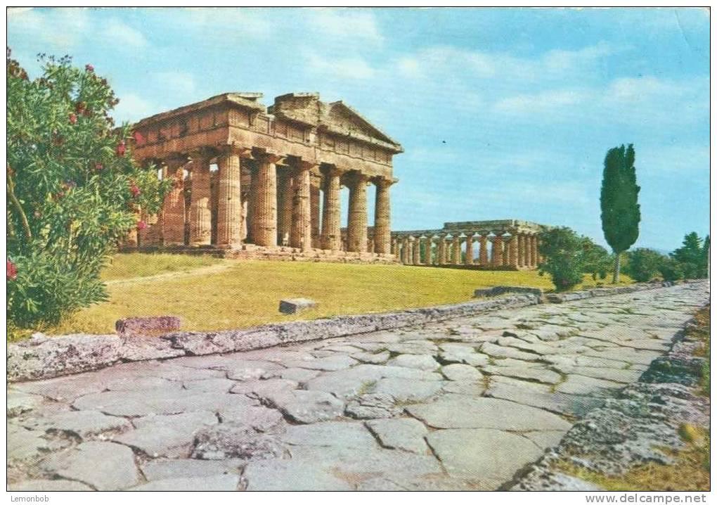 Italy - Paestum - Neptune´s Temple - Unused Postcard [P2462] - Salerno