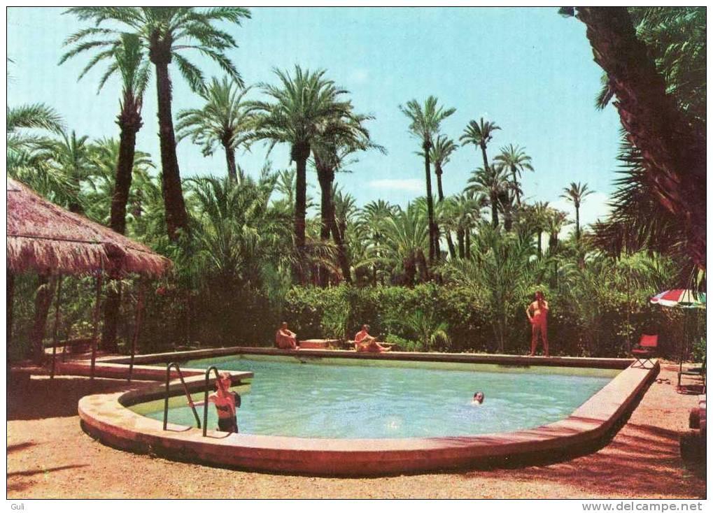 """Espagne (Alicante)-  ELCHE -  Camping """"El Palmeral"""" Piscina, Piscine, Swimmingpool.* PRIX FIXE - Alicante"""