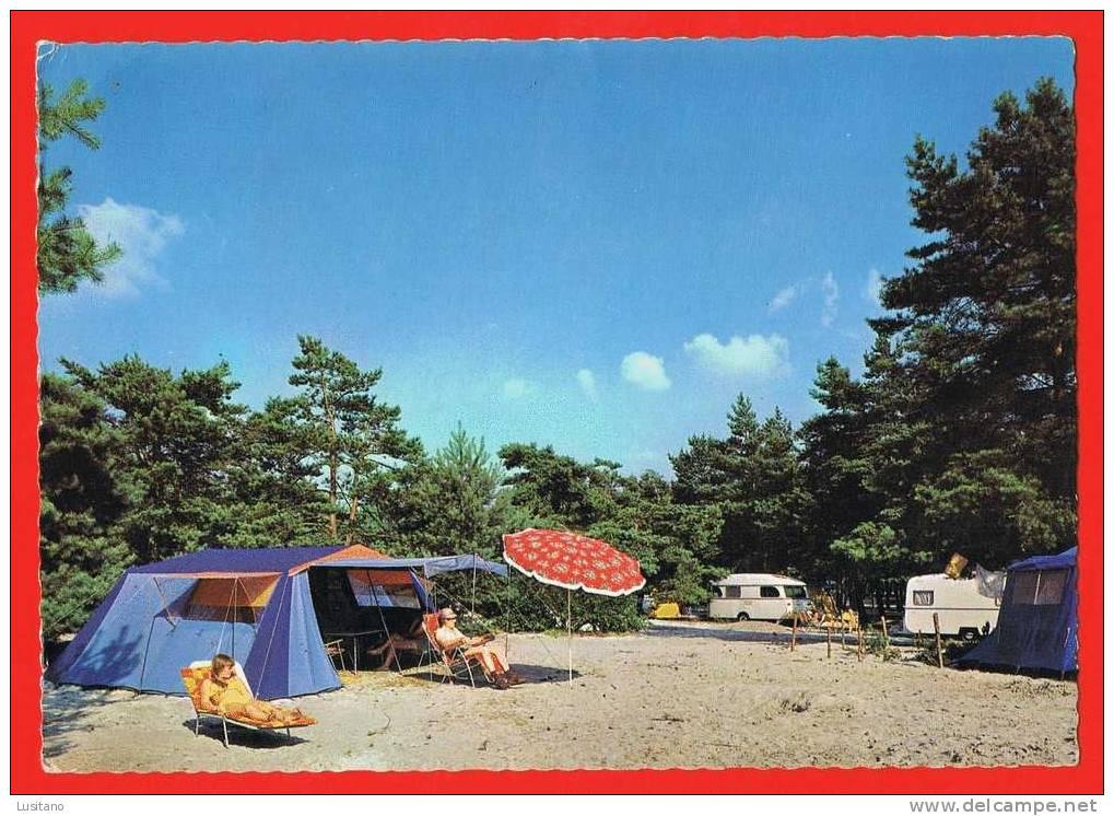 Mol Provinciaal Domein Zilvermeer - Timbre Avec Suplementaire - Camping ( 2 Scans ) Belgium Belgique - Mol
