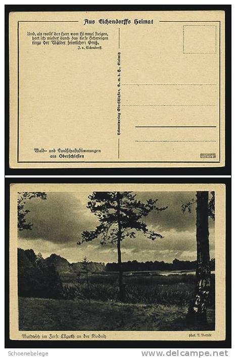 A555) Ansichtskarte Waldteich Im Forst Ellguth An Der Klodnitz, Oberschlesien, Ungebraucht - Schlesien