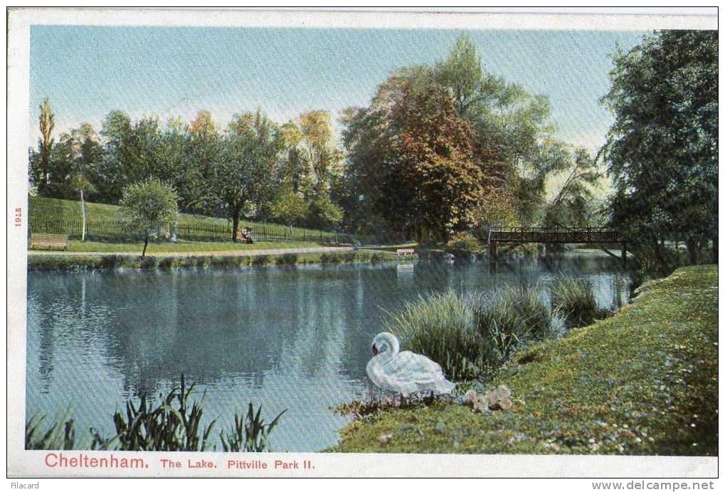 13755    Regno  Unito,    Cheltenham,  The Lake,  Pittville Park II.,  NV - Cheltenham