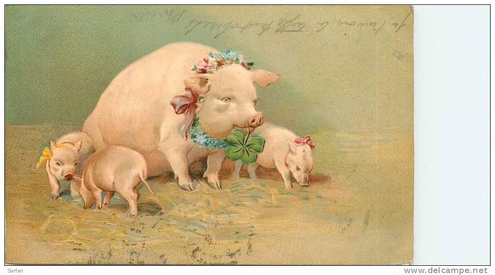 ANIMAUX , Cochon  , Carte Gaufrée  , *9479 - Maiali