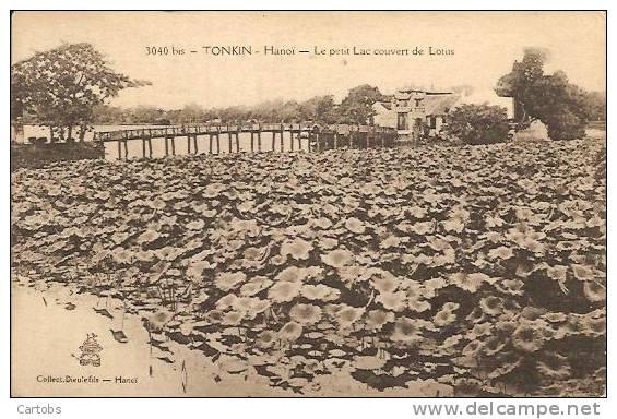TONKIN HANOI Le Petit Lac Couvert De Lotus - Viêt-Nam