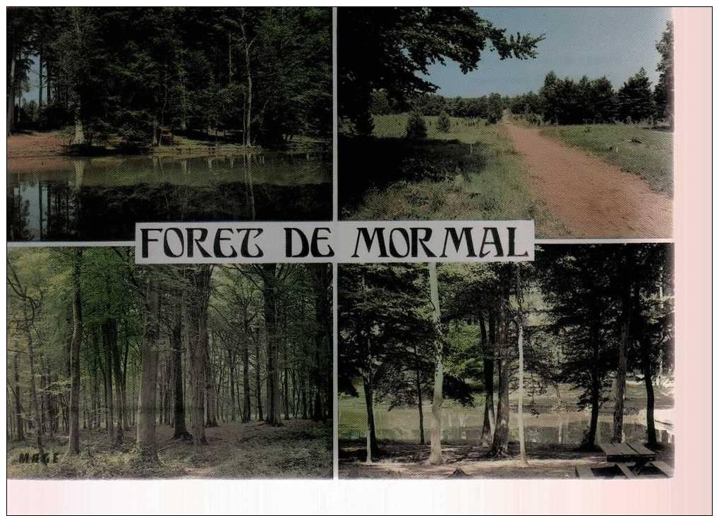 Carte Postale - Nord - Foret De Mormal - Berlaimont