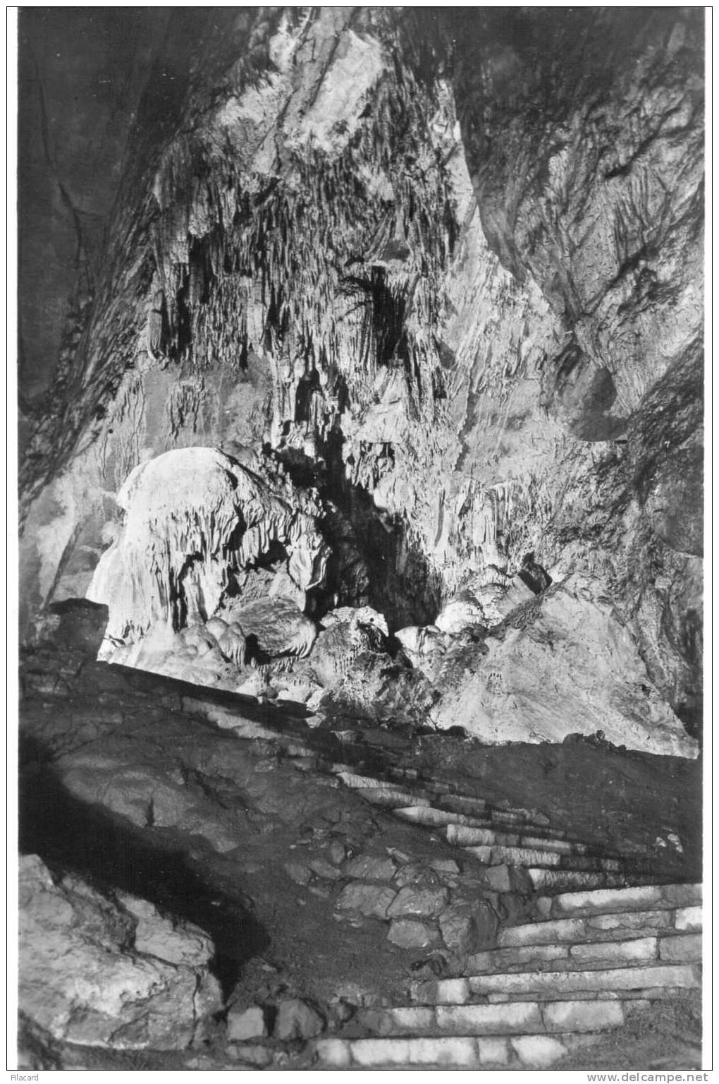 15139   Belgio,  Les  Grottes  De  Han-sur-Lesse,  La  Salle  Du  Trophee,  NV - Rochefort