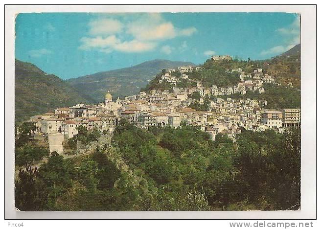 NOCERA TERINESE CARTOLINA FORMATO GRANDE VIAGGIATA - Italia