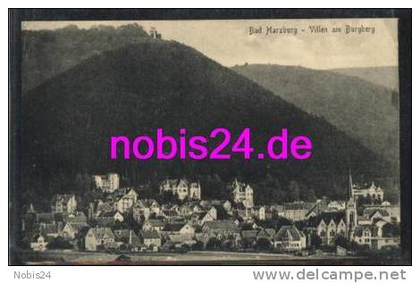 0000357581 38667 Bad Harzburg Villen Am Burgberg  Ca.1920 - Bad Harzburg