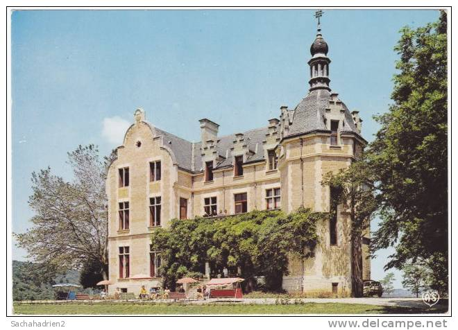 11. Cpsm. Gf. CHALABRE. Château De Falgas. 101 - Ohne Zuordnung