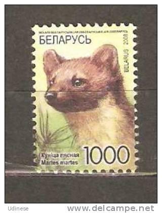 BELARUS 2008 - ANIMALS - MARTES MARTES 1000   - USED OBLITERE GESTEMPELT - Rongeurs