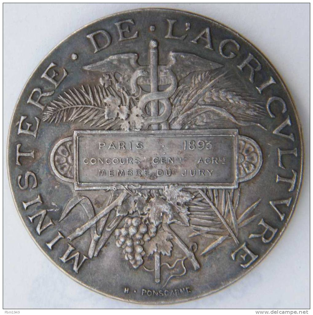 Médaille 1 - Professionals / Firms