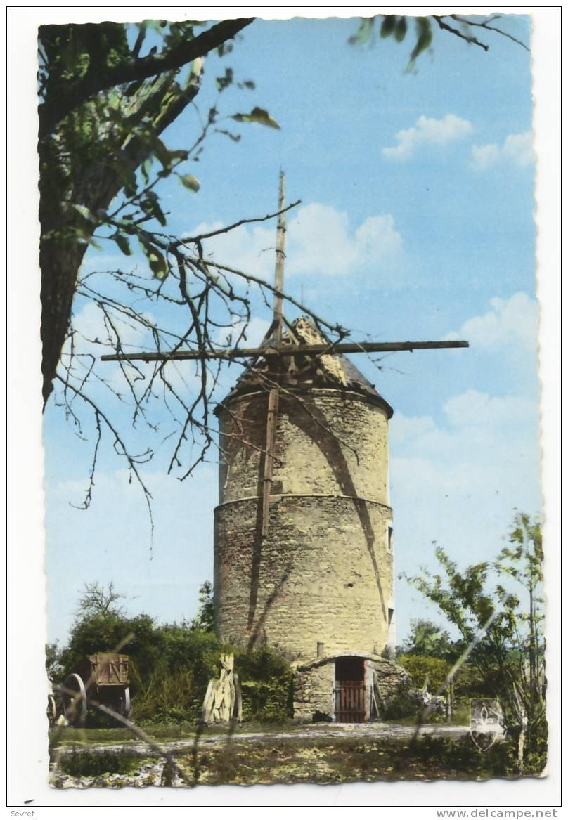 SAINT-PIERRE Le MOUTIER. -  Moulin à Vent.  CPSM 9x14 - Saint Pierre Le Moutier