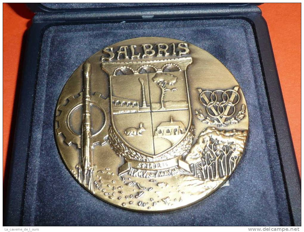 Médaille De Bronze, Région Centre Le Coeur-de-France, Pichard, Ville De Salbris, Loir-et-Cher 41 - Touristiques