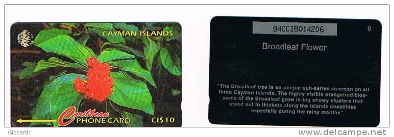 ISOLE CAYMAN     - GPT  - 1996 FIORI (FLOWERS: BROADLEAF) CODE 94CCIB  (0 NOT CROSSED)   USED  - RIF. 1015 - Isole Caiman