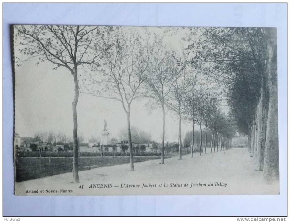 ANCENIS - L'avenue JOUBERT Et La Statue De Joachim Du BELLAY - Ancenis