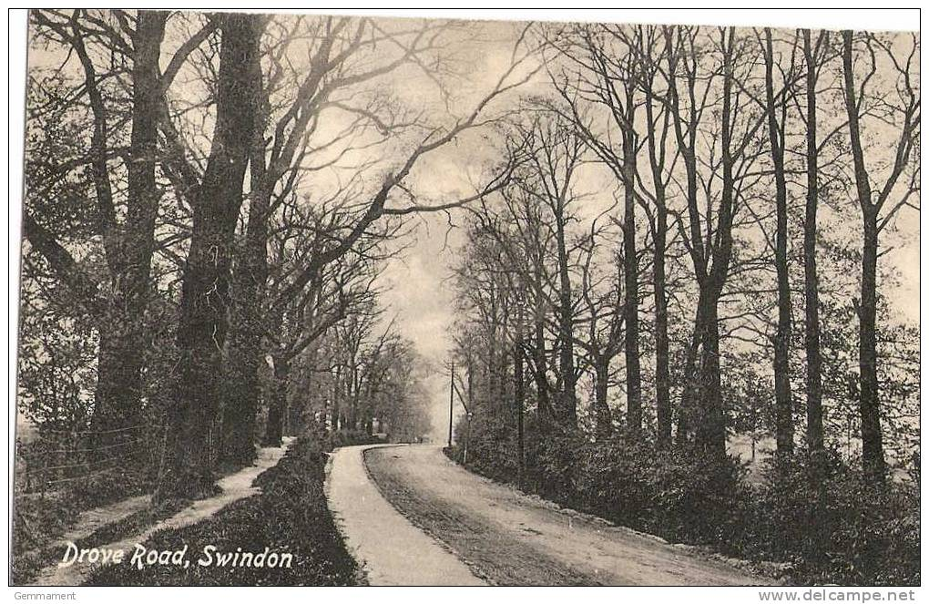 SWINDON -DROVE ROAD - Angleterre