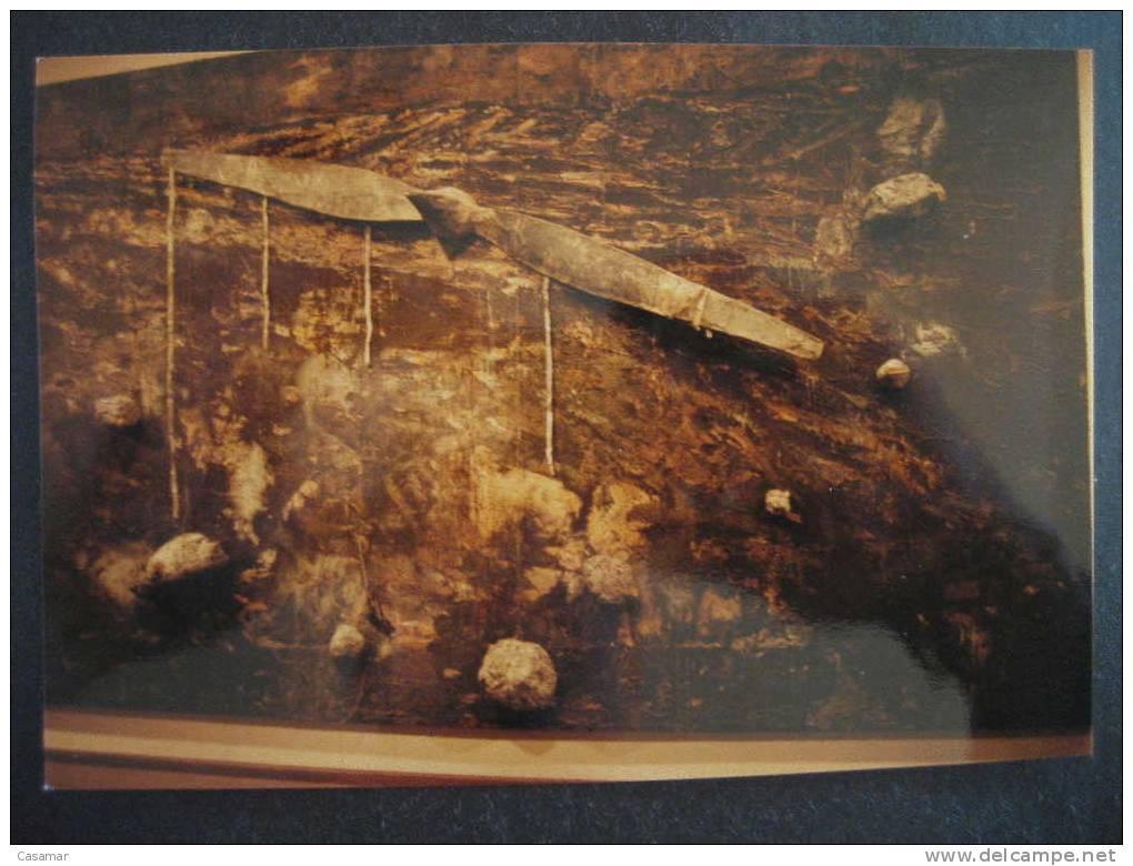 GERMANY PHOTO Archeology Archeologie Cave Rock Paintings Rupestre Fossil Animals Prehistoric Fauna Prehistory Prehistoir - Historia