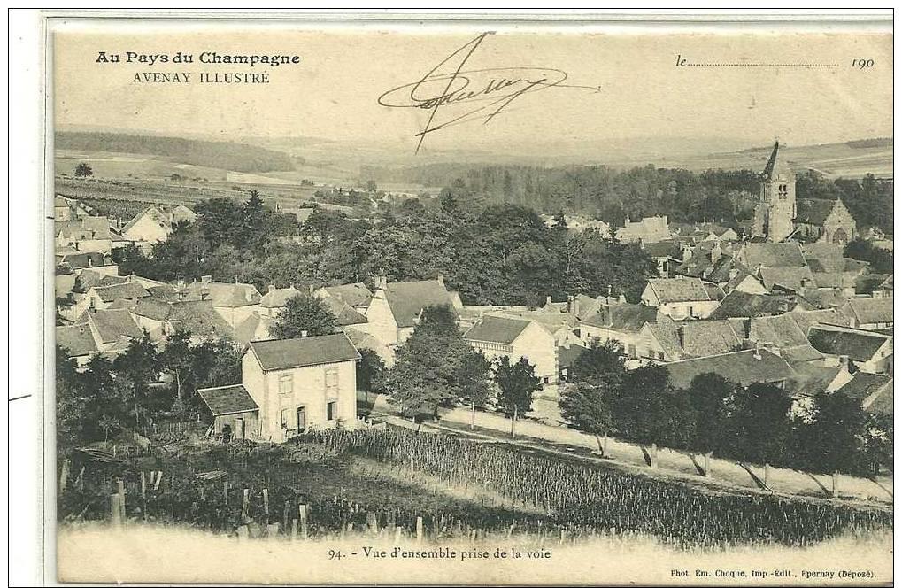 AVENAY  N94 VUE D ENSEMBLE PRISE DE LA VOIE  BEAU CLICHE TIRAGE 1900 - Unclassified