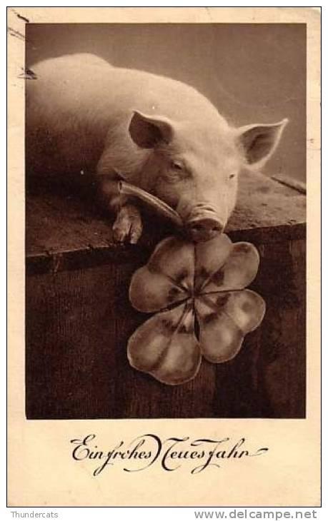 CPA COCHON TREFFLE A 4 FEUILLES BONHEUR ** PIG SHAMROCK LUCK FORTUNE **  VARKEN - Cochons