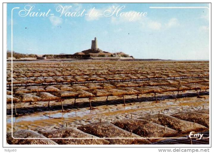 Saint Vaast La Hougue - Le Fort De La Hougue Et Les Parcs à Huitres - Saint Vaast La Hougue