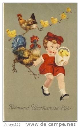 K326 Cock, Rooster, Hen, Fowl, Chicken - Pasen