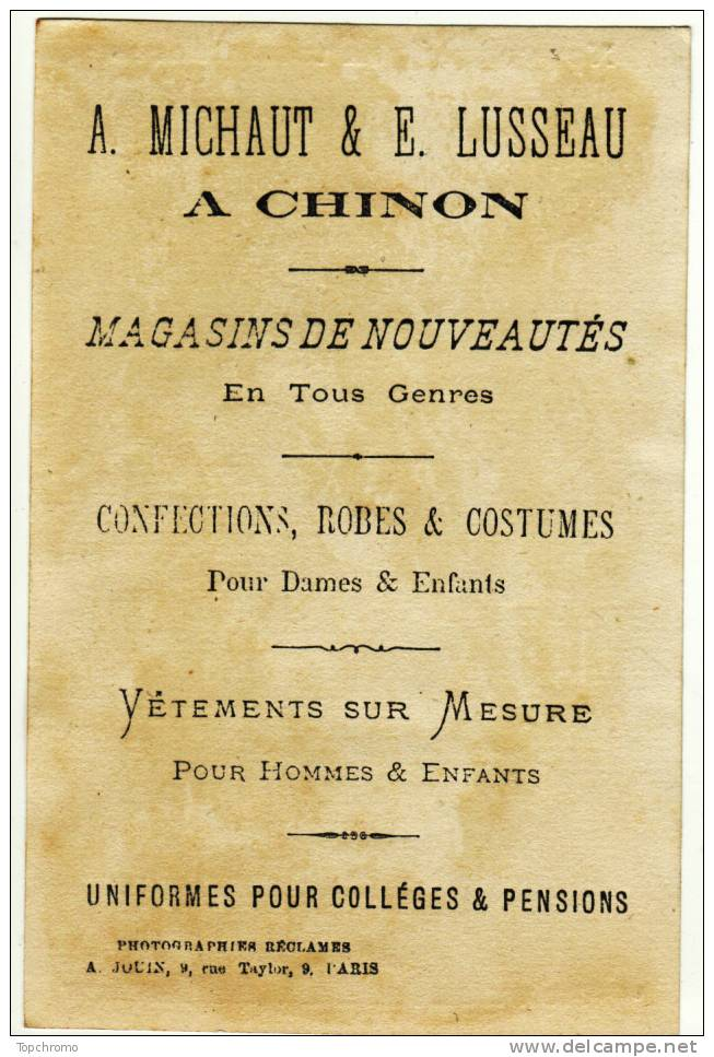CHROMO Michaut & Lusseau Chinon Bayonne Le Vieux Château - Cromos