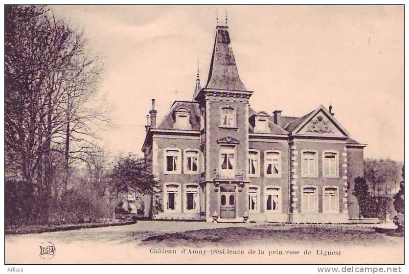 AMAY = Château (résidence De La Princesse De Lignes) (Légia) Vierge - Amay