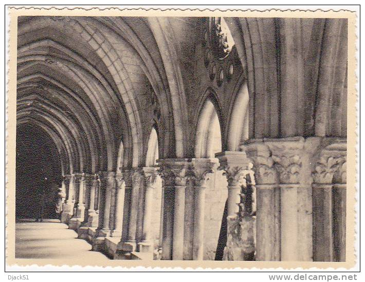 Laon - Cloître De La Cathedrale (Aisne) - 14 Juin 1954 - Lieux