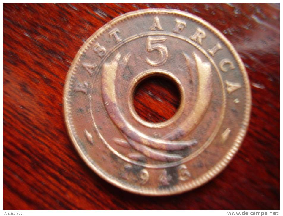 BRITISH EAST AFRICA USED FIVE CENT COIN BRONZE Of 1943 (SA) - British Colony