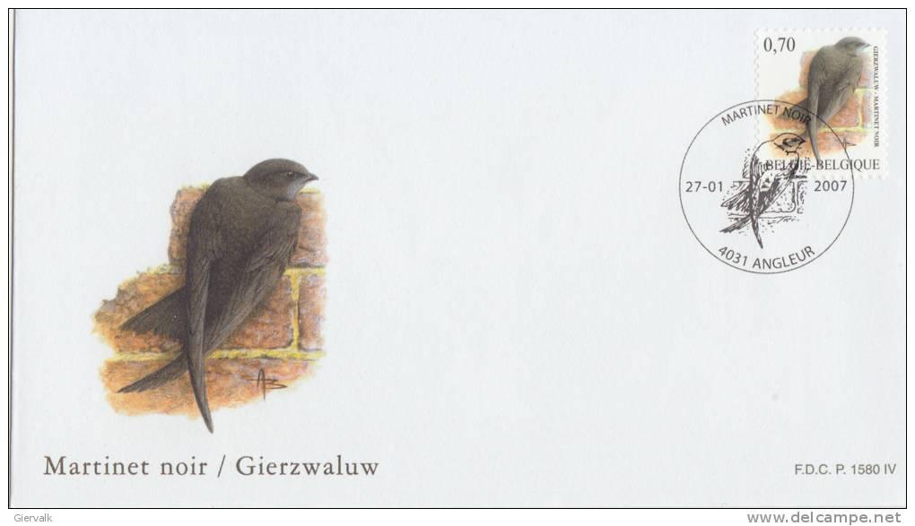 1985-.. Oiseaux (Buzin) - Delcampe.nl