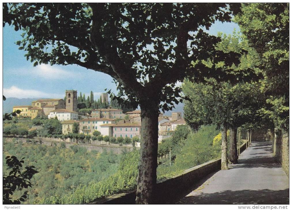 Cp , ITALIE , MONTECATINI ALTO , Panorama , Vue Générale - Pistoia