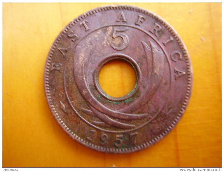 BRITISH EAST AFRICA USED FIVE CENT COIN BRONZE Of 1957 ´KN´ - British Colony