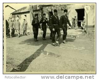 Algérie Défilé N°3 - War, Military