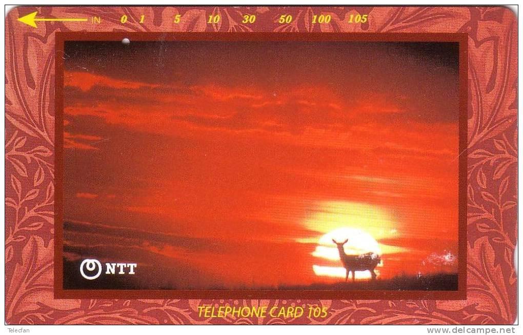 JAPON BICHE COUCHER DE SOLEIL DOE AT SUNSET SUPERBE - Télécartes