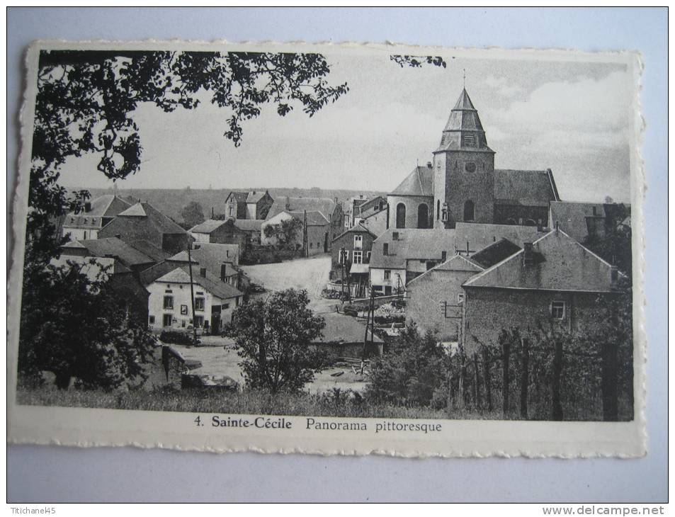 SAINTE-CECILE - Panorama Pittoresque - Florenville
