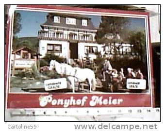GEMANY CAVALLO HORSE CARROZZA LUFTKURORT  PONYHOF MEIER VB1991  DI10773 - Taxi & Carrozzelle