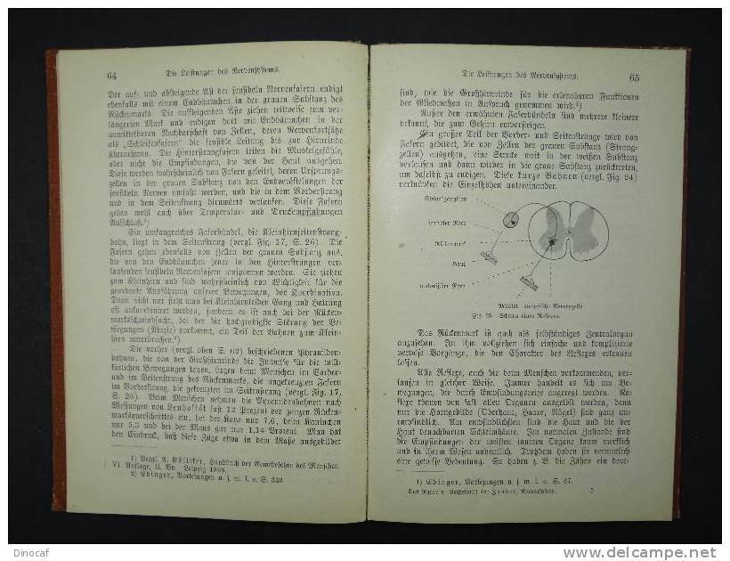 """""""Vom Nervensystem"""", Von Prof. Dr. R. Zander **1903** 151 Seiten, Mit 27 Abbildungen Im Text - Libri, Riviste, Fumetti"""