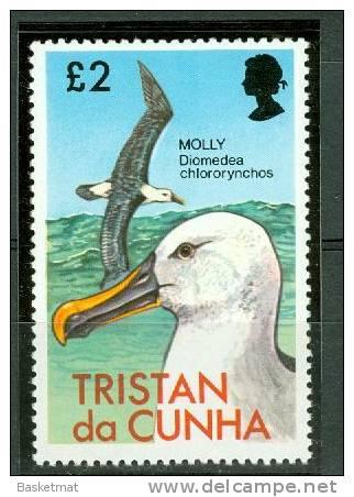 TRISTAN DA CUNHA FREGATE MARITIME - Albatrosse & Sturmvögel
