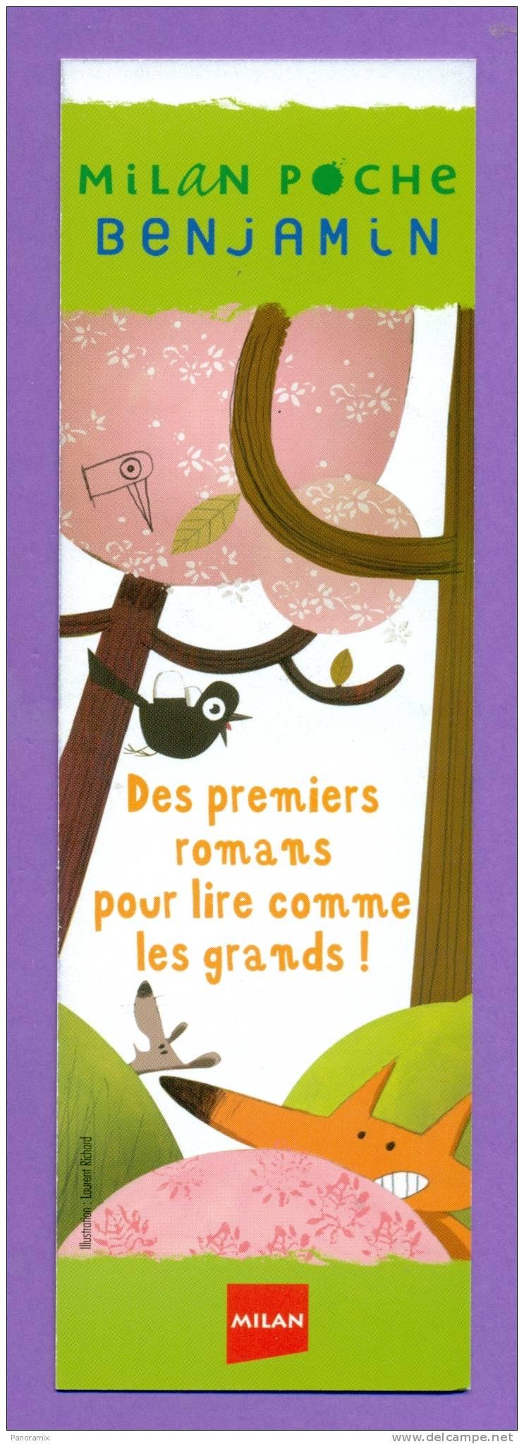 """Milan  Benjamin  Cadet   """"  Premiers  Romans  Pour  Lire  """"   5 X 16 Cm - Marque-Pages"""