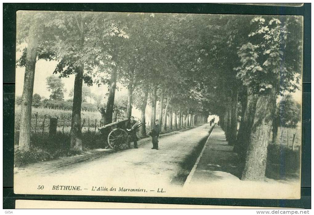 BETHUNE L'ALLEE DES MARRONNIERS  - Sn53 - Bethune