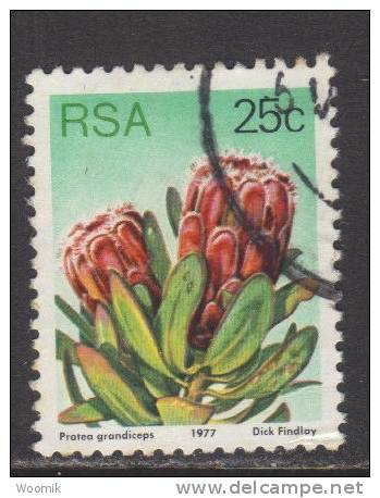 South Africa ~ 25c Definitive ~ Flowers ~ Perf. 12½ ~ SG 426 ~ 1977 ~ Used - Unclassified