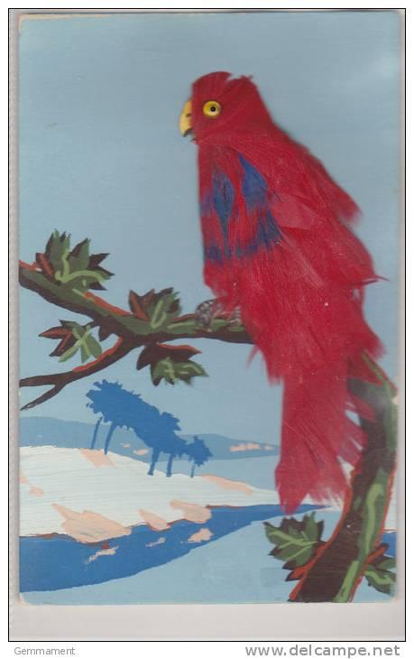 BIRD POSTCARD - REAL FEATHERS - Postcards